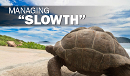 Managing Slowth