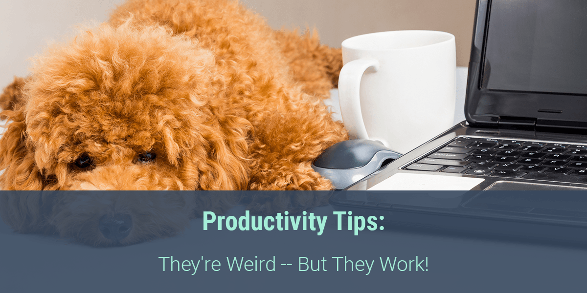 Productivity Tips: They're Weird -- But They Work!